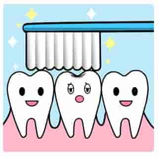 歯磨きは1日1回