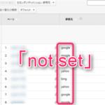 Google Analytics「not set」